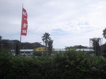 amamiooshima297.jpg