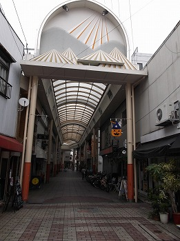 amamiooshima299.jpg