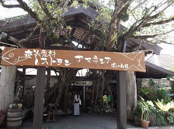 amamiooshima334.jpg
