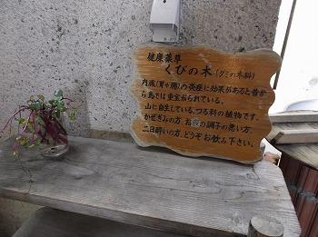 amamiooshima337.jpg
