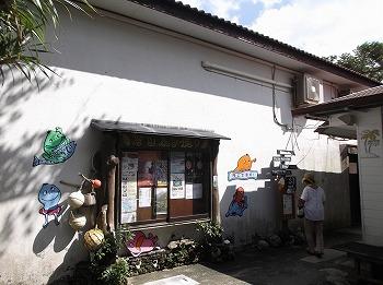 amamiooshima343.jpg