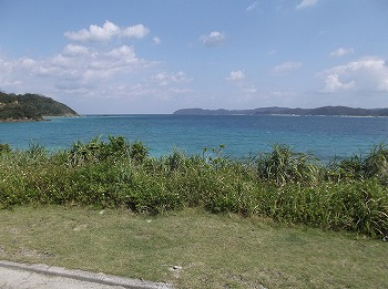 amamiooshima391.jpg
