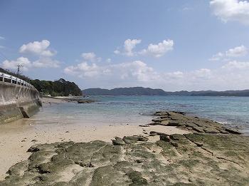amamiooshima393.jpg