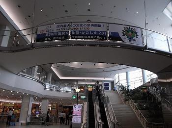 kagoshima5.jpg