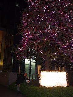 nagoya-street242.jpg