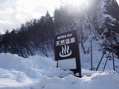 shiretoko166.jpg
