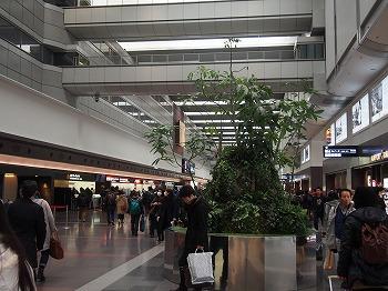 tokyo-airport89.jpg