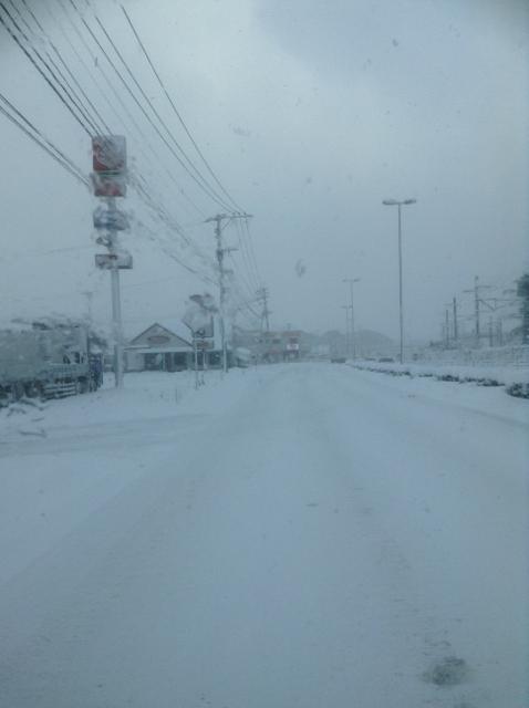 0130雪-1