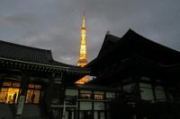 BL151011東京案内2IMG_0228