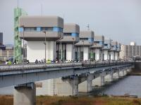 BL151101淀川市民マラソン7DSC00557