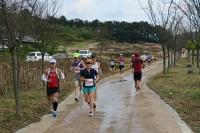 BL151115コチャンマラソン2-5IMG_0546
