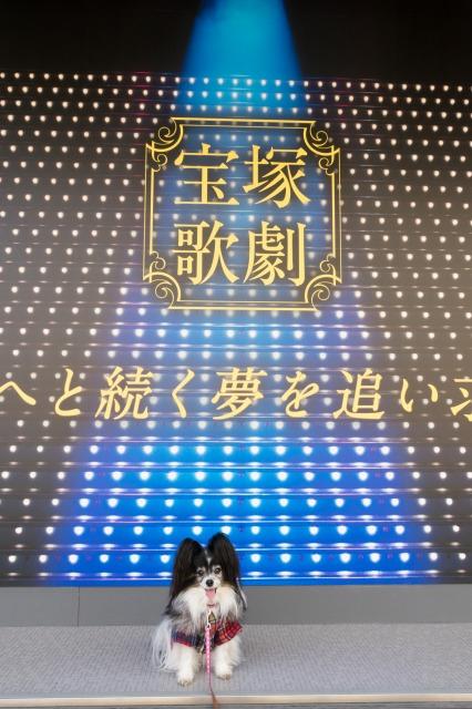 歌劇場界隈を散策♪-010