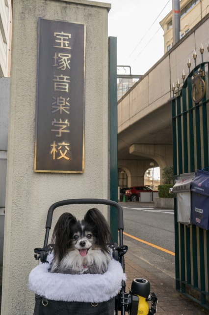 歌劇場界隈を散策♪-011