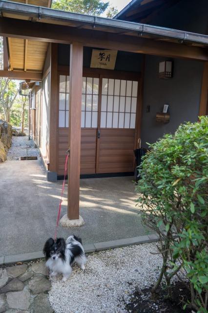 伊豆合宿(その8)-008