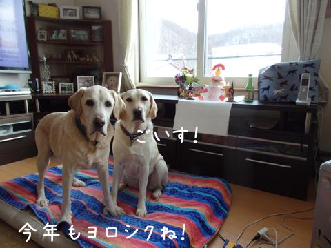 aisatu_20160102172129dc7.jpg