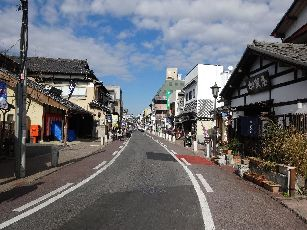 成田山参道 (2)