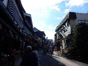 成田山参道 (9)