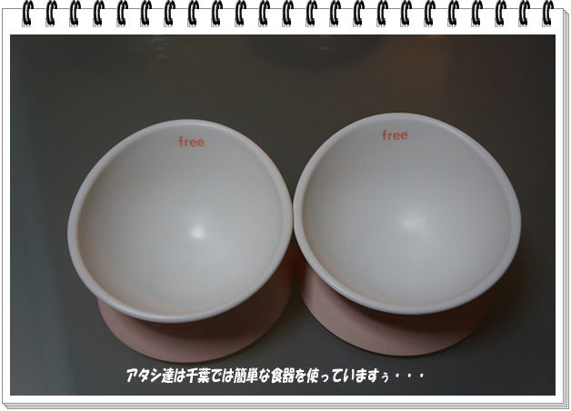 簡単な食器