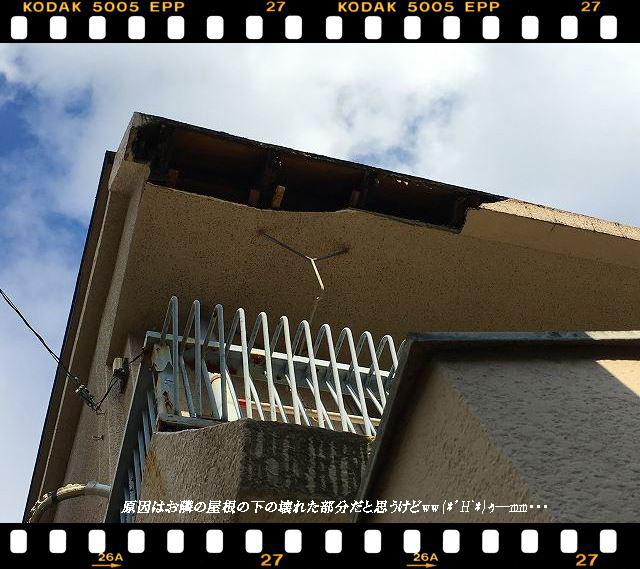 壊れた屋根