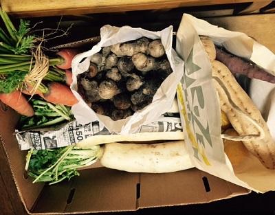 置き土産の野菜