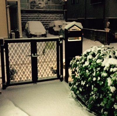 20日の雪