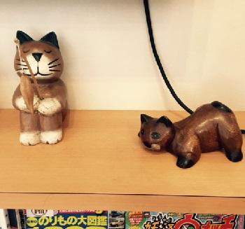 猫好き先生