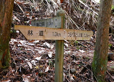 20151219_ashitaka_gorin_24.jpg