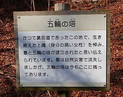 20151219_ashitaka_gorin_36.jpg
