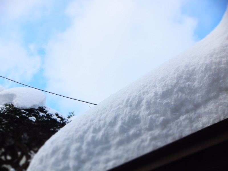 2016 大雪 屋根