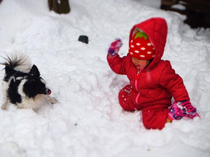 雪遊び みゆ モモ
