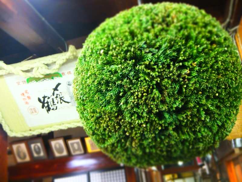 杉玉 緑 (3).