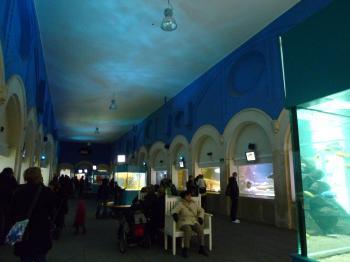 アントワープ動物園・水族館