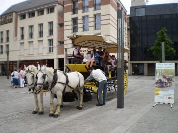 アミアンの馬車