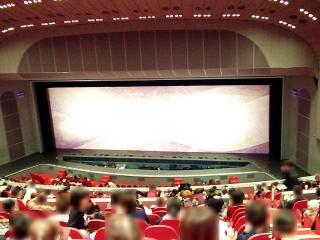 160104_3705「宝塚大劇場」開演前の緞帳・2階B席よりVGA