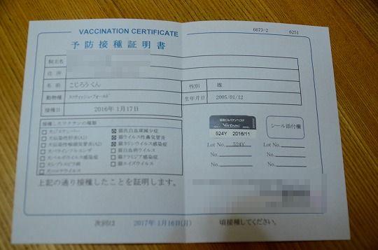 DSC_9389.jpg