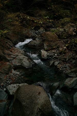 林道脇の川