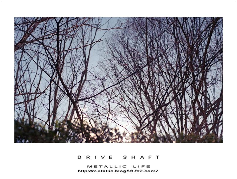 mlrx20160308-1