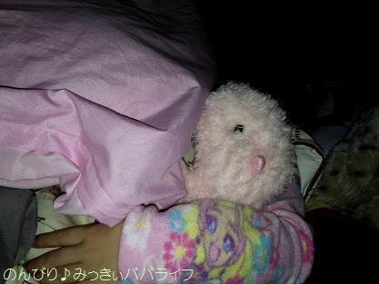 capibara01.jpg