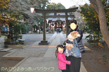 hatsumoude201601.jpg