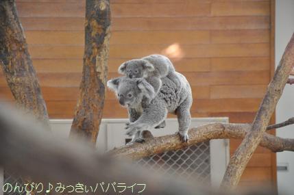 saitamazoo35.jpg