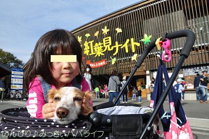 shinrinkoen20151101.jpg