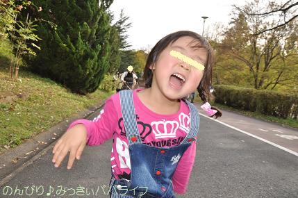 shinrinkoen20151102.jpg