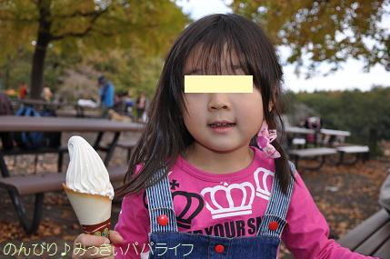 shinrinkoen20151110.jpg