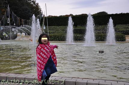 shinrinkoen20151114.jpg