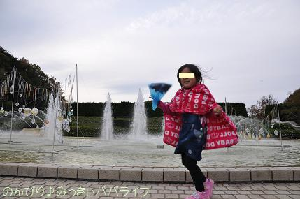 shinrinkoen20151116.jpg