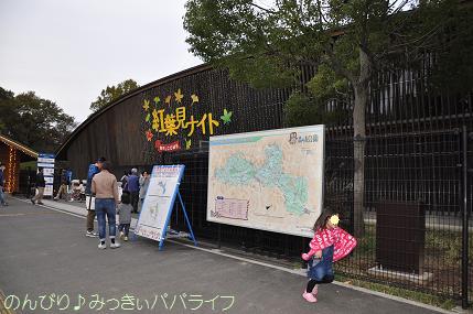shinrinkoen20151119.jpg