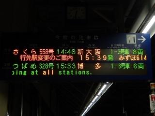 kurume-sakura-2n.jpg