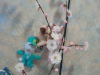 2016 梅の花
