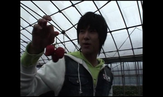 イチゴ狩り10