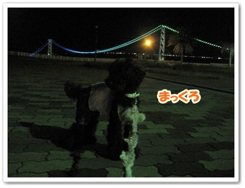 IMG_4033 (450x338)